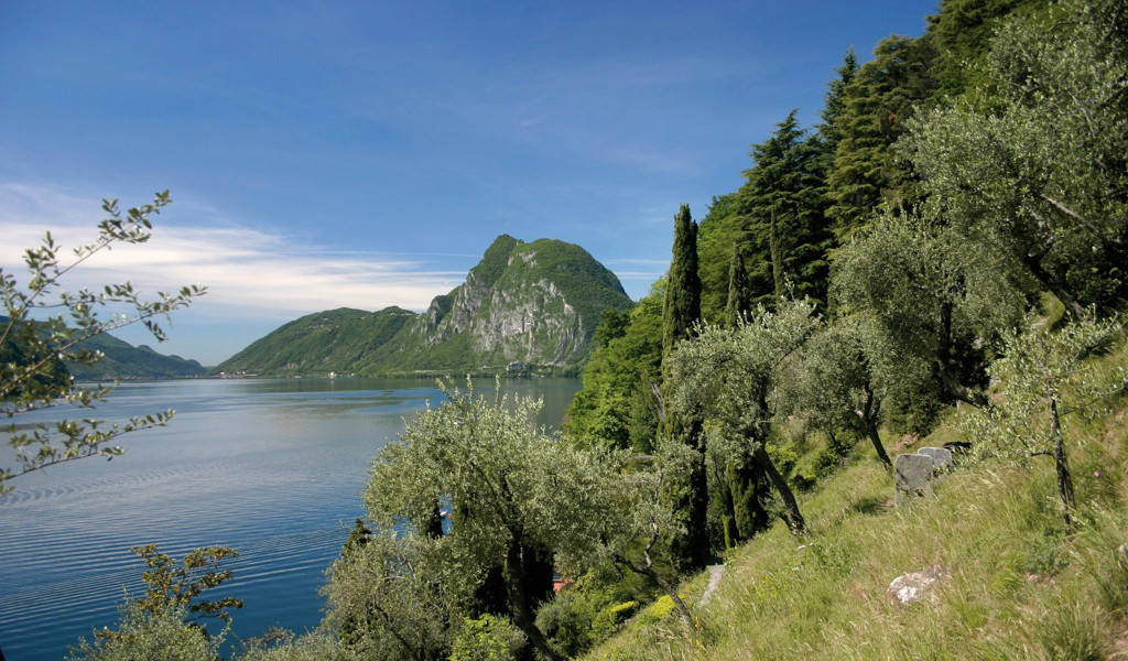 Cruise to Gandria and return by walking