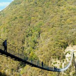 250_guidesi_tour_ponte_sospeso